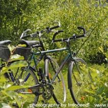 Ideal für Radfahrer